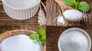 Xylitol vs. Stevia_ Which One is Better on a Low Carb Diet_