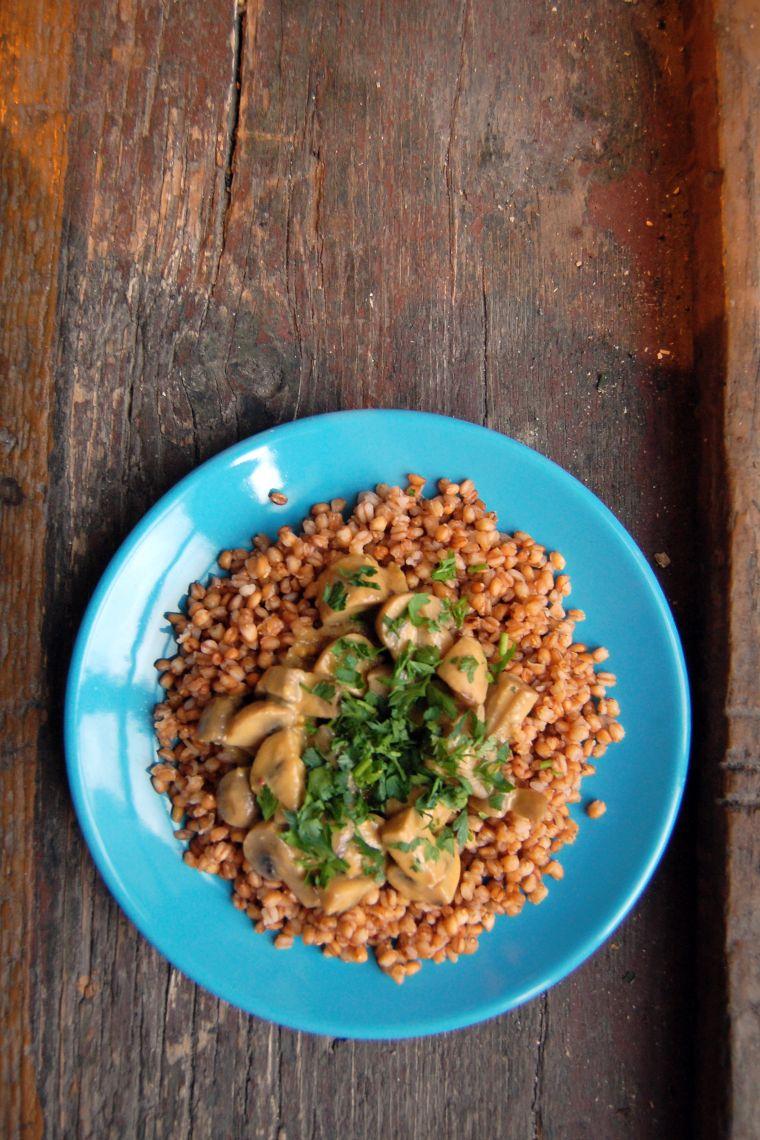 barley dish