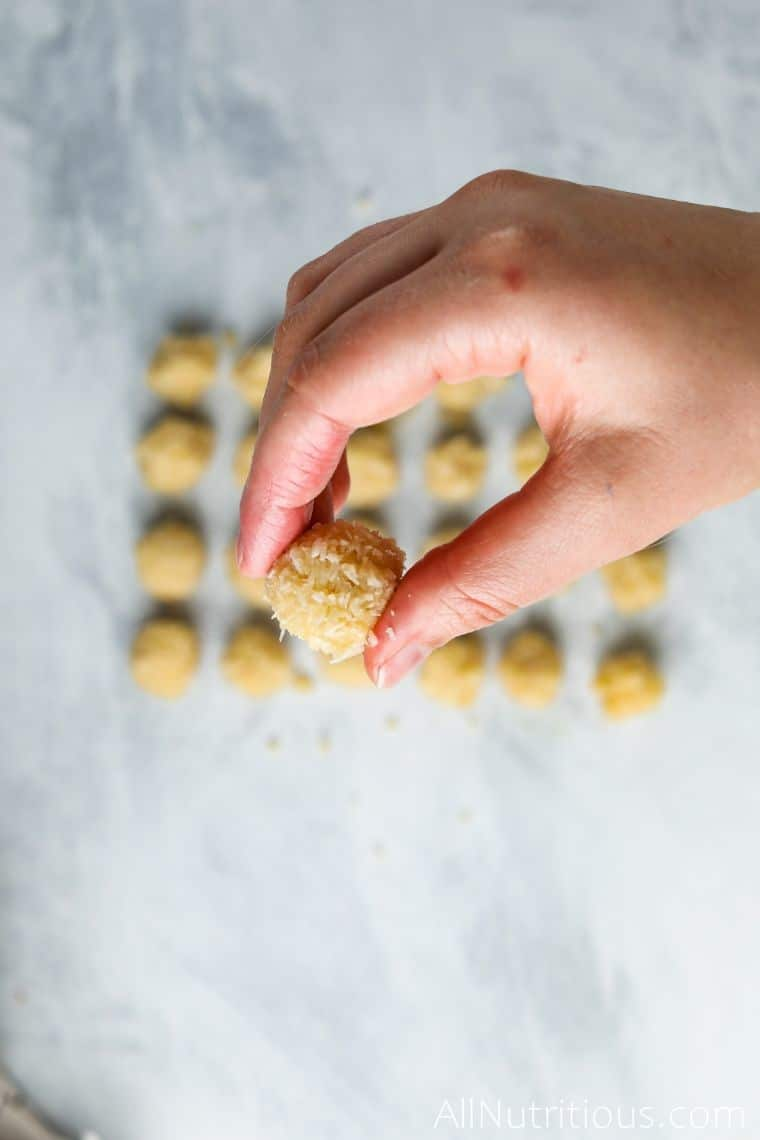 formed coconut protein ball