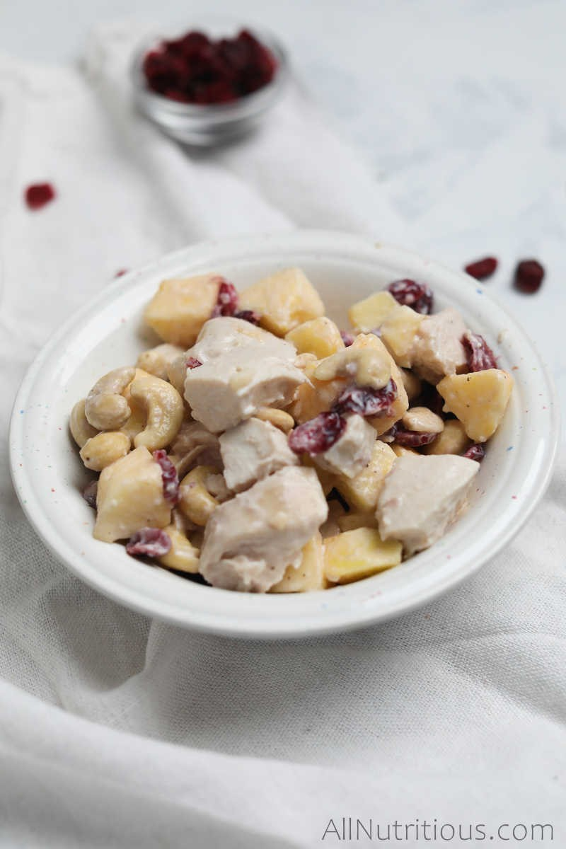 finished bowl of chicken salad with cranberries