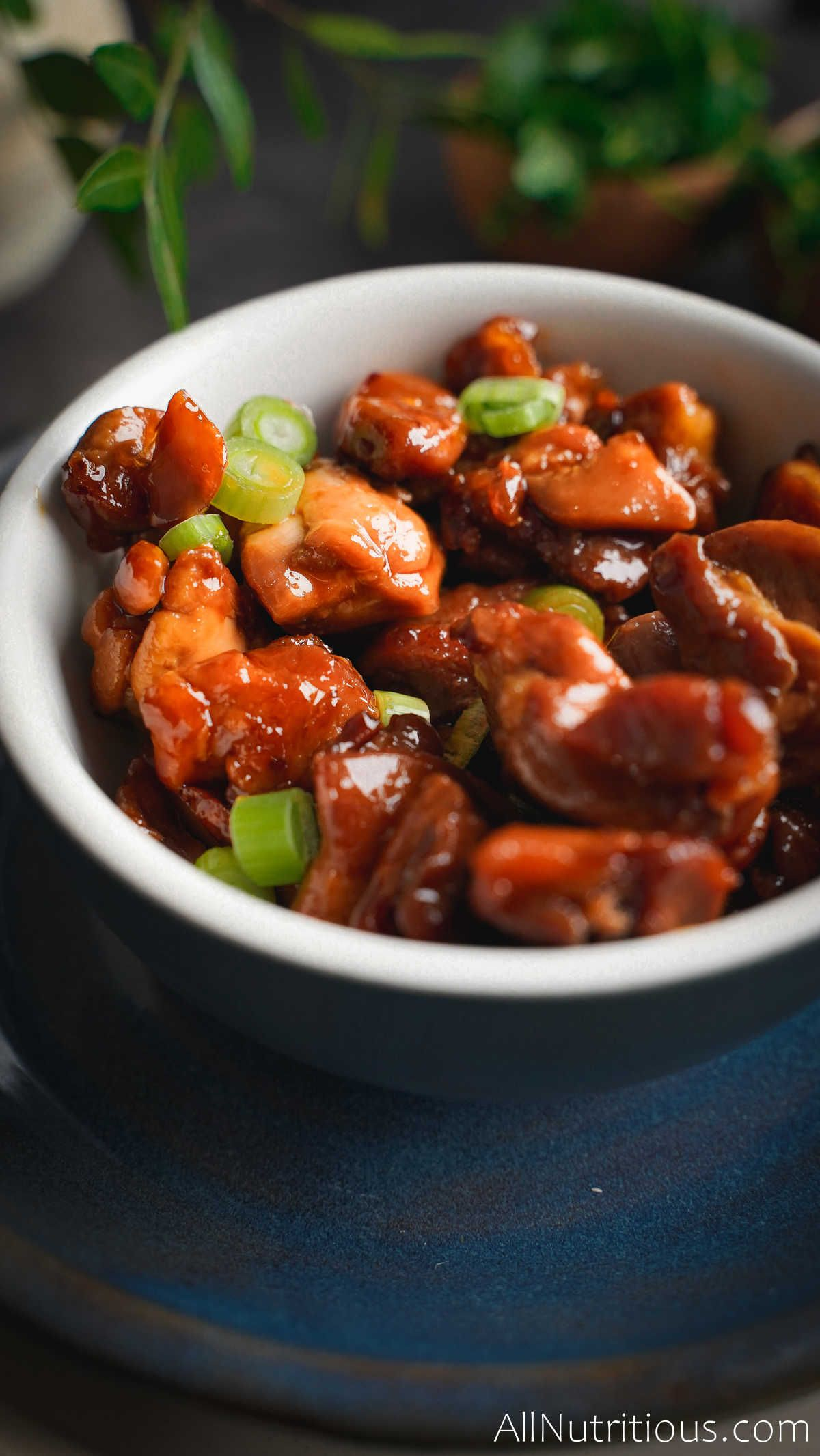 chicken in bowl with green onions