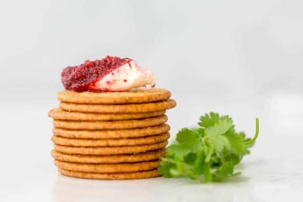 Fresh Cranberry Cilantro Dip